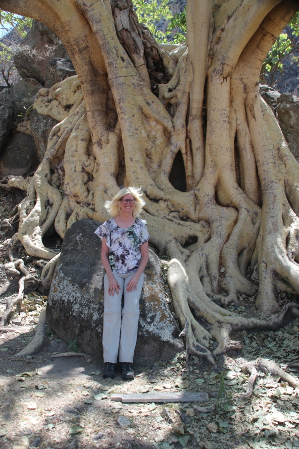 With an amate tree at Chalcatzingo