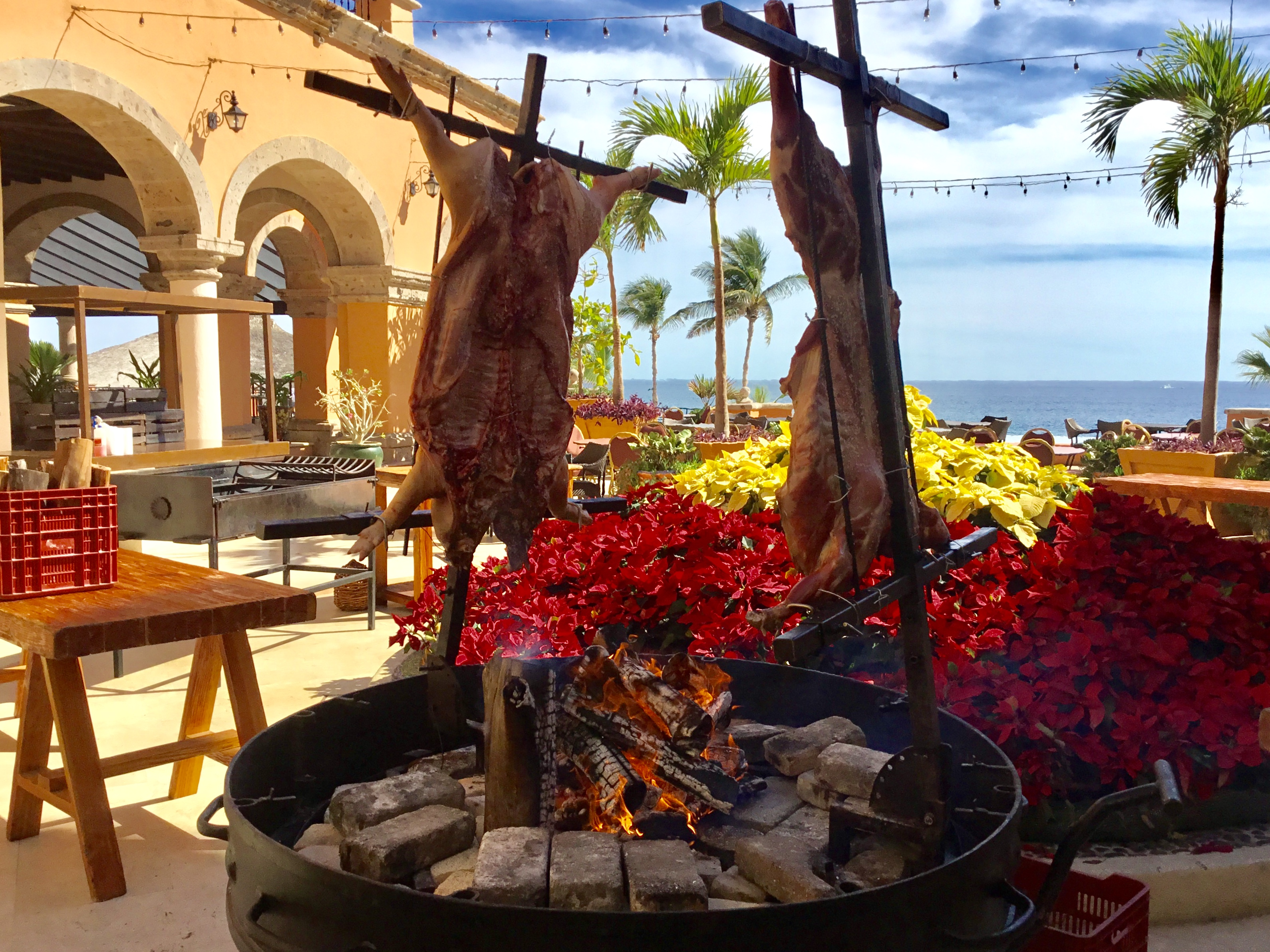 New Year's Eve in Los Cabos, Mexico