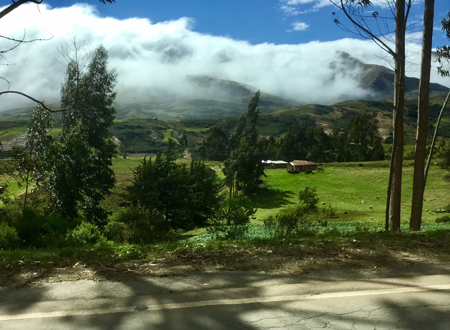On the road in Bolivia