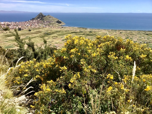 Overlooking Copacabana, Bolivia and Lake Titicaca