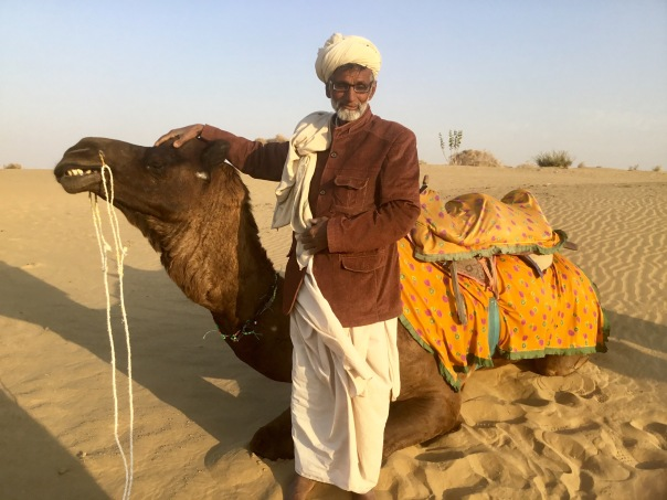 "Carlos the camel saying, ""Cheese,"" Thar Desert, Rajasthan, India"